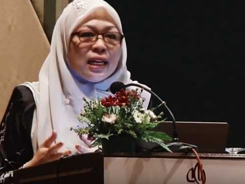 IIUM law professor Shamrahayu Abdul Aziz says a caretaker government will also advise the King on the administration