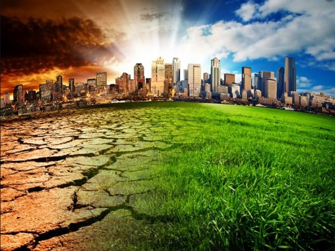 Climate change – to act or not to act