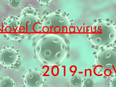 UPDATES ON NOVEL CORONAVIRUS (2019-nCoV) SURVEILLANCE