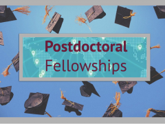 (Deadline 15 MAY 2019): THE OPENING OF THE IIUM RESEARCH INITIATIVE GRANT FOR POST-DOCTORAL FELLOWS (RIGS PDF) 2019