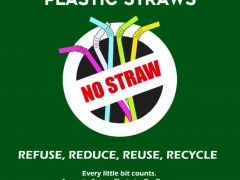 ZERO PLASTIC USAGE : AN OVERVIEW