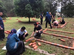 Plant Bedding Construction
