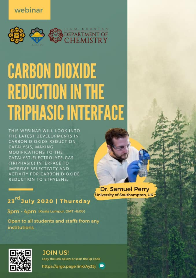 Carbon Dioxide Reduction in the Triphasic Interface
