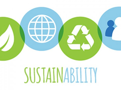 Hands off 'sustainability' rankings