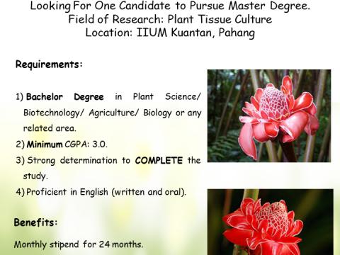 Postgraduate Opportunity