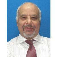 Emad Mohamad Nafie Abdel Wahab