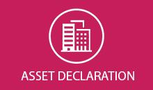 Asset Declaration